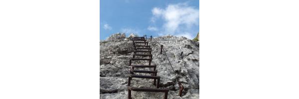 Sicherungsgeräte & Klettersteigsets