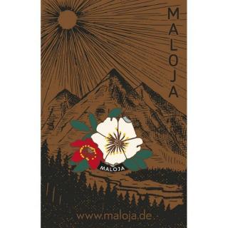 Maloja MulegnM. flower OS